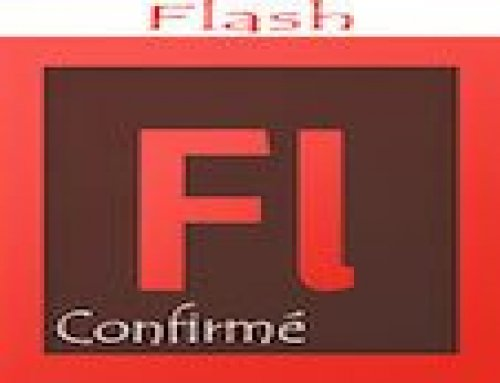 Formation Adobe Flash – Confirmés