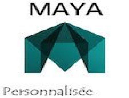 Formation Maya – Personnalisée
